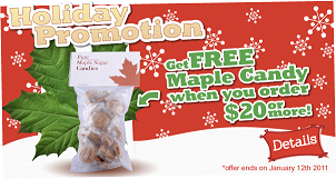 holidaypromotion.png