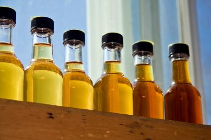 MapleSyrupWorld Maple Syrup Tasting